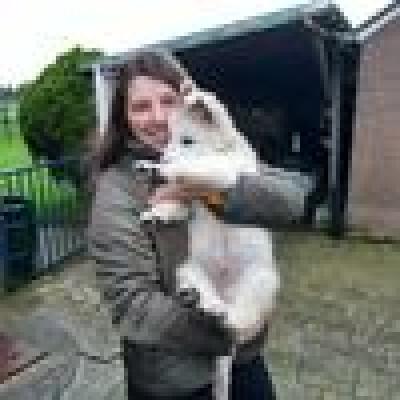 Evelyn Stoffer zoekt een Huurwoning / Kamer / Appartement / Studio in Groningen
